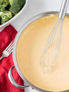 Freezer Cheese Sauce Pan