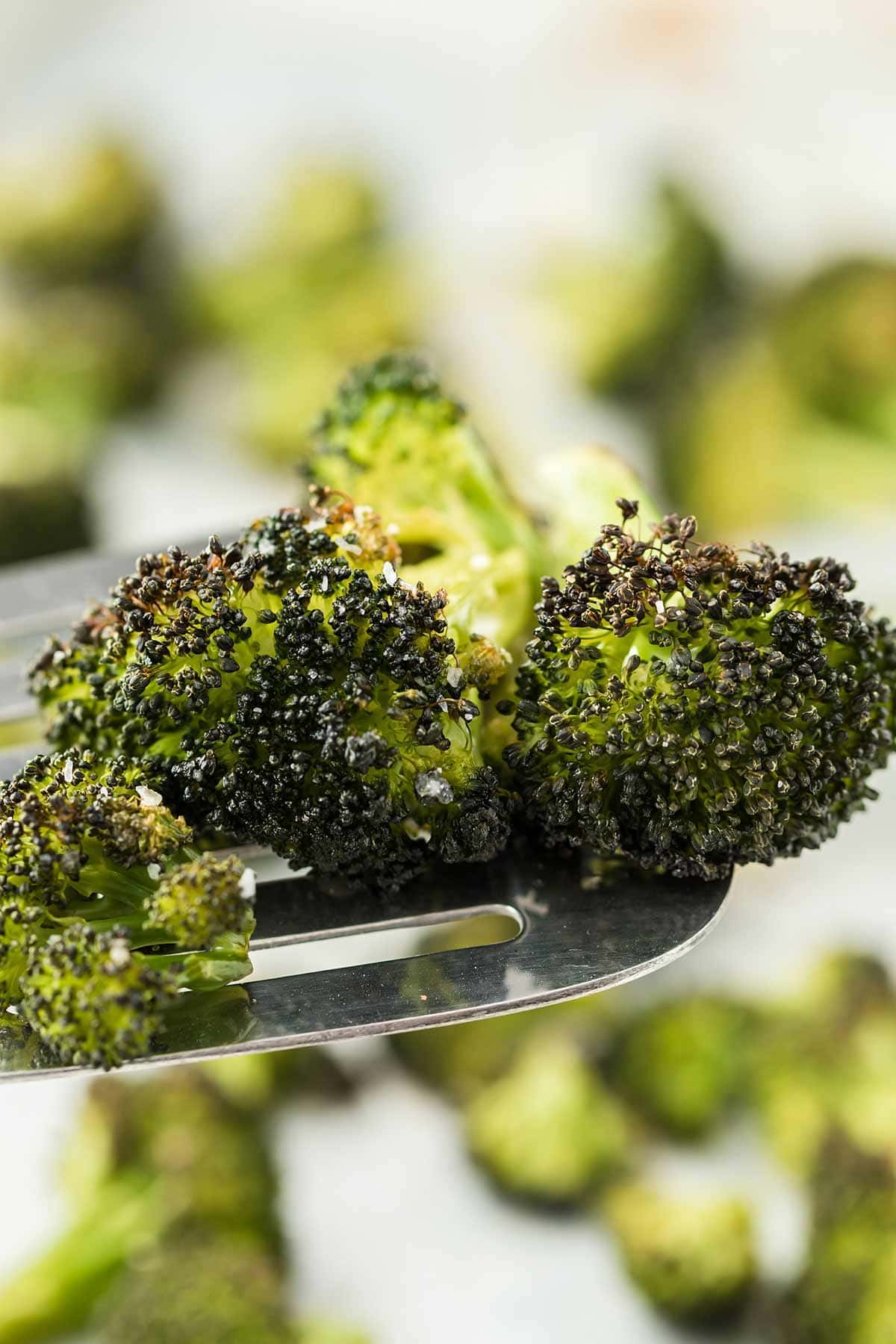 Close up of roasted broccoli on a silver spatula.